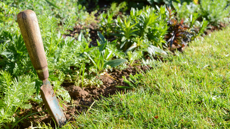 Gardening work tools by a lush green flower bed Stockfoto