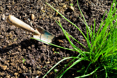 Empty flower bed in a garden ready for planting Archivio Fotografico - 120525638