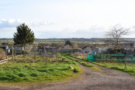 Allotment plot or community garden shared by multiple owners to grow your own vegetables and food