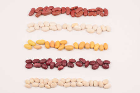 Five Rows of Beans With White Background