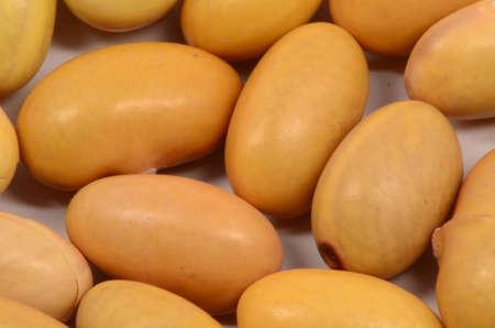 Micro Of Mayo Coba Bean Stock Photo