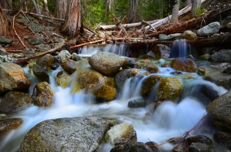 cascading: Spring Cascading Creek