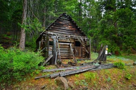 Log Cabin Horse Stall