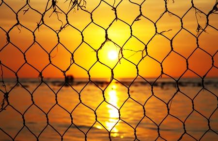 Beautiful sunset trough captivity photo