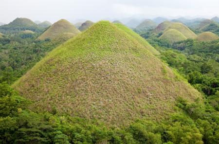 bohol: Chocolate Hills in Bohol, Visayas, Philippines