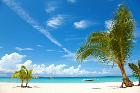 philippines: Two palm trees on a beach in Bantayan island, Philippines Stock Photo