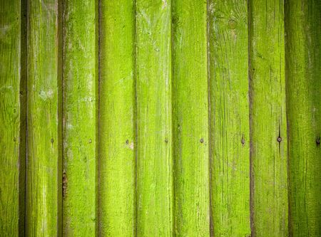 Old mossy wooden background texture photo