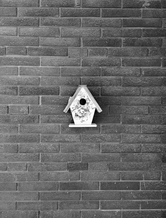 wall textures: Birds house - Italy Stock Photo