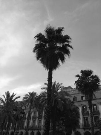 Pla? A Reial (Barcelona, ?? Hiszpania) Zdjęcie Seryjne