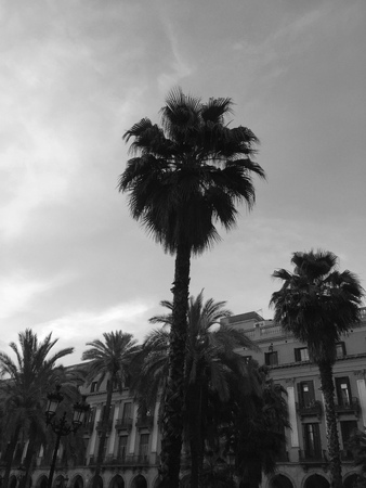 Pla?a Reial (Barcelona, ??Spain)