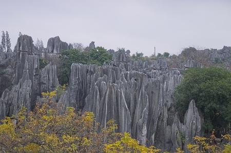 Stone Forest - Kunming (Shilin, Yunnan, China)