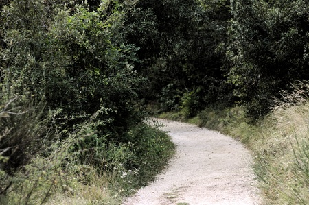 Trekking pathway - Beaten track - Beaten road (Marche, Italy, Europe) Imagens