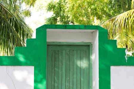 Green wooden door of a Maldivian house with palms (Ari Atoll, Maldives)