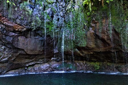 A natural source on the rock in a cenote cave (Madeira Island, Portugal)
