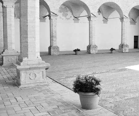 An isolated vase on the ground with a plant near brick columns in the patio of an abbey (Gubbio, Umbria, Italy) Фото со стока