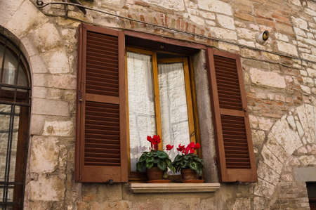 A window with brown wooden shutters and white curtains with red flowers outside (Gubbio, Umbria, Italy, Europe)
