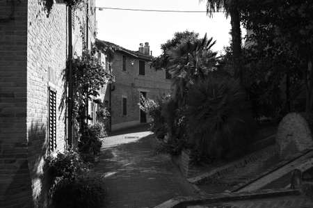 An alley of a medieval Italian village with brick buildings and exotic plants (Corinaldo, Marche, Italy)