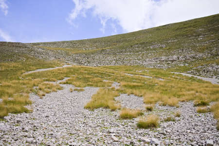 An arid meadow in the Sibillini Mountains National Park (Marche, Italy, Europe)