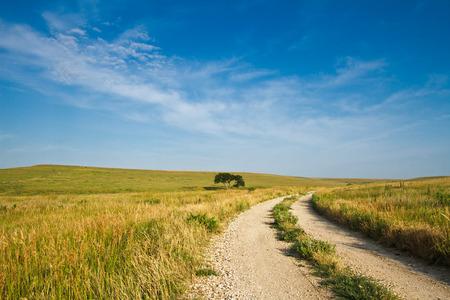 flint: A gravel road going through the Flint Hills of Kansas.