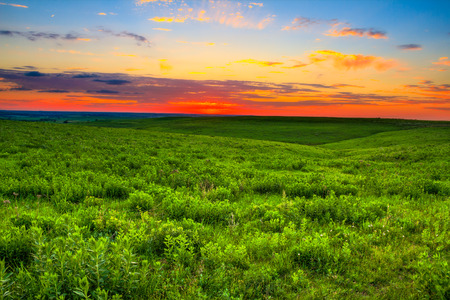 rancheros: Puesta de sol sobre la tierra de la pradera que es tan importante para los ganaderos de las Flint Hills de Kansas. Kansas tambi�n es conocido por ser uno de los 10 mejores lugares del mundo para puestas de sol.