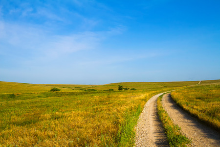 green hills: Country Road leading through the Flint Hills of Kansas