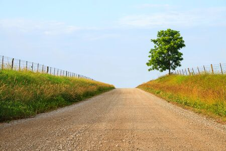 midwest: A country back road with gravel through some farmland in the midwest Stock Photo