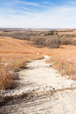 kansas: Vertical image if a path leading through Konza Prairie