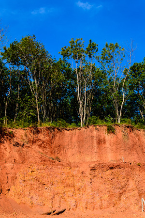 approve: soil dig activity must approve by government law always