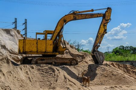crawler: crawler loader machinery dip up sand for construction