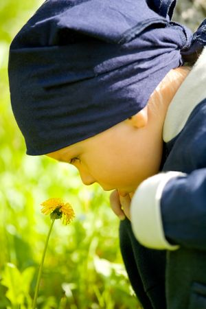 looked: Little boy looked at the spring flower. Stock Photo