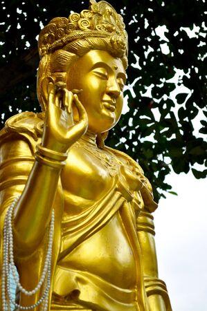 moulded: oro moldeado figura