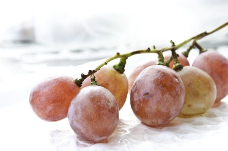 red Grapes on whith Standard-Bild