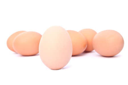 egg on white background Stock Photo - 13813469