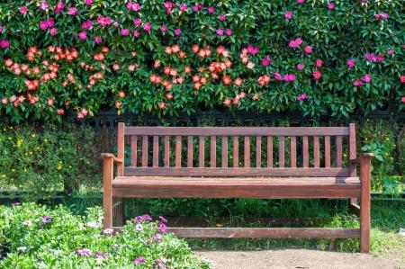 Banco de madeira em um belo jardim parque