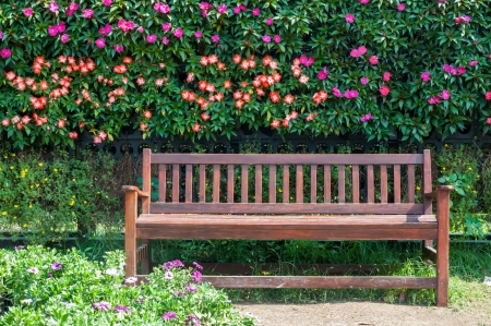 Wooden bench in a beautiful park garden photo
