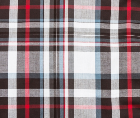 fabric plaid for the background photo