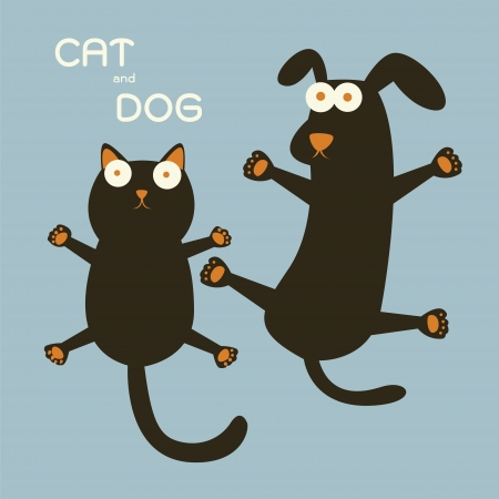 dog and cat: Cat and Dog