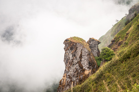 panoramatic: close up ofmountain cliff and fog at intanon chiangmai thailand