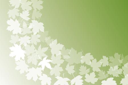 deciduous: Background material wallpaper (, Autumn leaves, deciduous, fall, ginkgo, maple, maple)