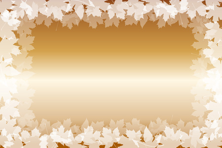 maple trees: Wallpaper materials, maple, maple, maple trees, leaves, autumn, autumn, deciduous trees, leaves, view autumn leaves about, Asian, Japanese, Japan