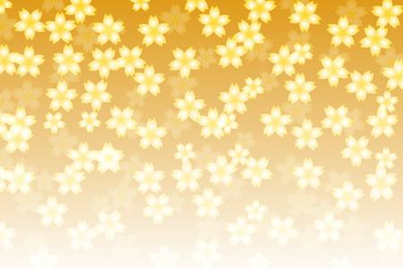 graduation ceremony: Background material wallpaper, flower, cherry blossom, Sakura, Sakura, Asian, Japan, matriculation, graduation ceremony, pale, feather, light, decoration