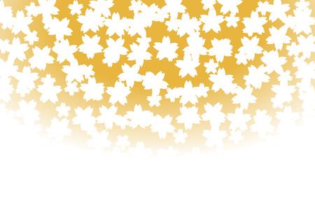 bitter orange: Background material wallpaper, flower, cherry blossom, cherry tree, cherry blossom, bloom, spring, matriculation, graduation, margins, copy space,