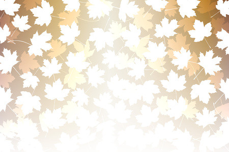 free fall: Wallpaper materials, maple, maple, maple, autumn, leaves, mountain, nature, plants, trees, landscape, Japanese-style, pattern, traditional patterns, Japan, autumn