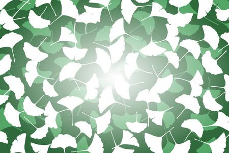 fallen: Background material wallpaper, maple, Ginkgo, Ginkgo, Ginkgo, fallen, mountain, nature, tree, landscape, Japanese-style, pattern, traditional patterns, Japan, fall,