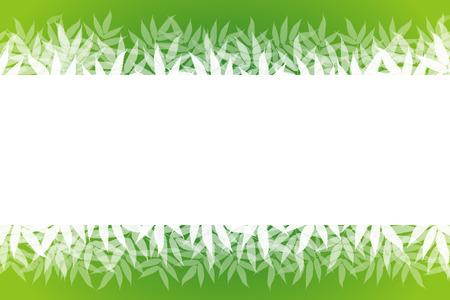 midsummer: Wallpaper materials, summer, nature, copy space, white space, and bamboo leaves, sasabayashi, Sasa, Sasa, green, forest, green