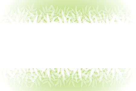 Wallpaper materials, summer, nature, copy space, white space, and bamboo leaves, sasabayashi, Sasa, Sasa, green, forest, green