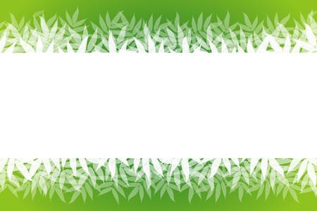 most popular: Wallpaper materials, summer, nature, copy space, white space, and bamboo leaves, sasabayashi, Sasa, Sasa, green, forest, green
