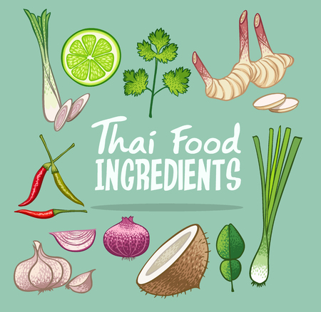 thai food ingredients doodle object vector illustration
