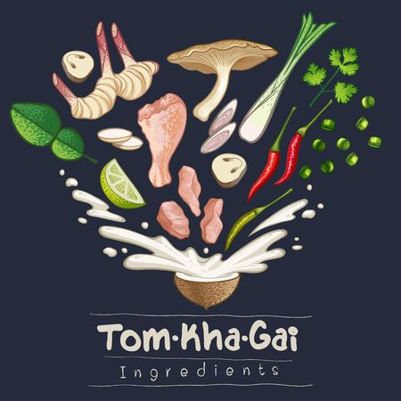 tomkhagai thai food recipe ingredient vector illustration Ilustrace