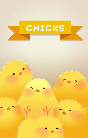 cute chicks character design set vector illustration